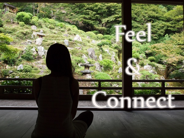 Can You Feel and Connect?