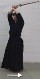 kendo basics haya suburi, hands up again,